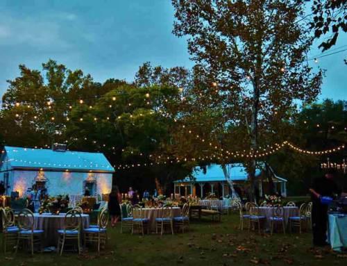 11/04/2017 – Madeline Ayer – Bradford Hollon Wedding – Meagan Warren Planner – Wavering Place Venue